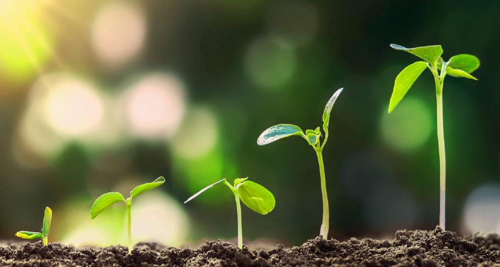 Una forma de financiamiento con el objeto realizar inversiones e instrumentos emitidos por empresas de alto impacto.